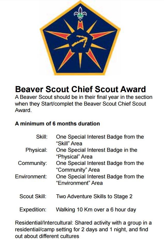 Chief Scout Award Criteria